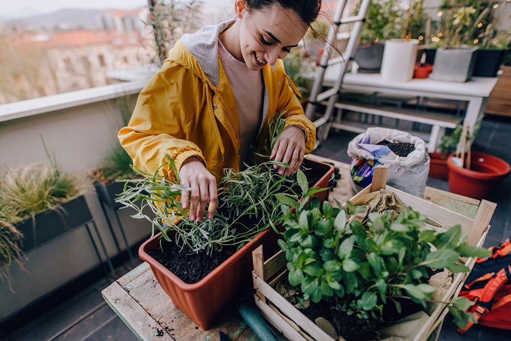 Jonge vrouw is bezig met haar kruidentuin op haar balkon